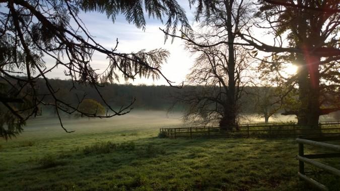 Spellbound by mist