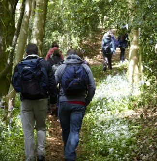 Walking in Wiltshire