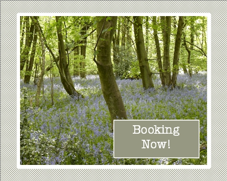 Book a Bluebell break now