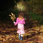Autumn walking and hiking holidays in rural England