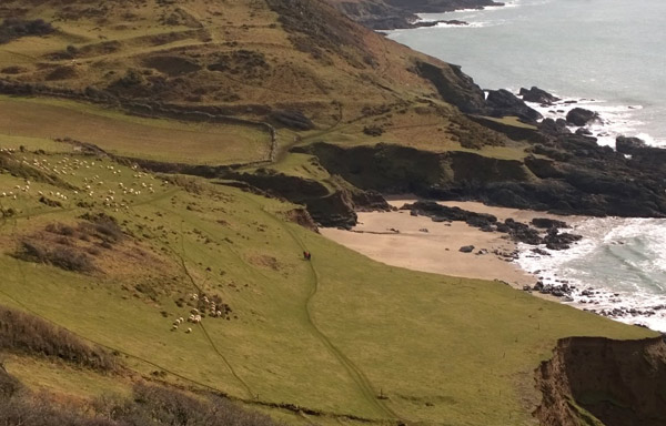 View of walkers on the Devon costal path